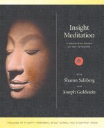 Insight Meditation Kit  - 2 CDs and book in Houston, Texas